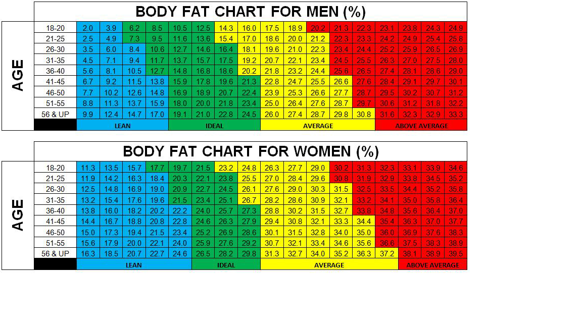 measuring body fat percentage with calipers