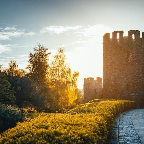 Arquitectura Medieval | Elementos y Características