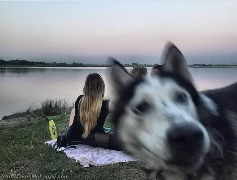 Oops Moments: Pictures Taken at the Right Time