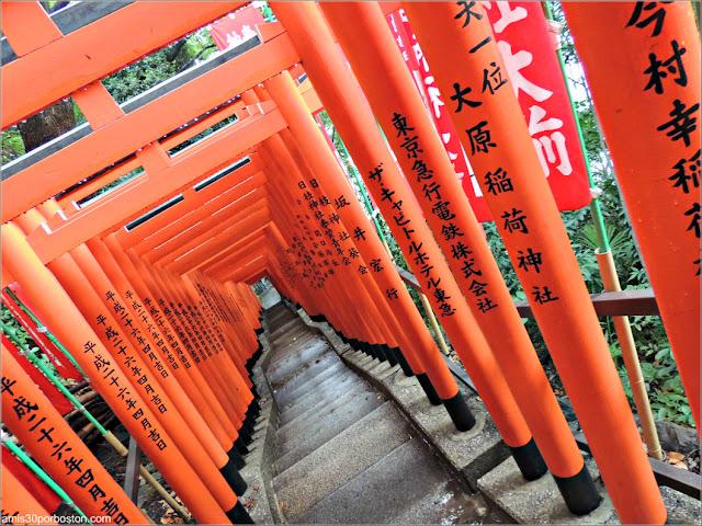 Túnel de Puertas Torii en el Santuario de Hie, Tokio