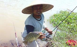 http://habinos.blogspot.co.id/2015/07/memilih-umpan-mancing-ikan-nila-di-danau.html