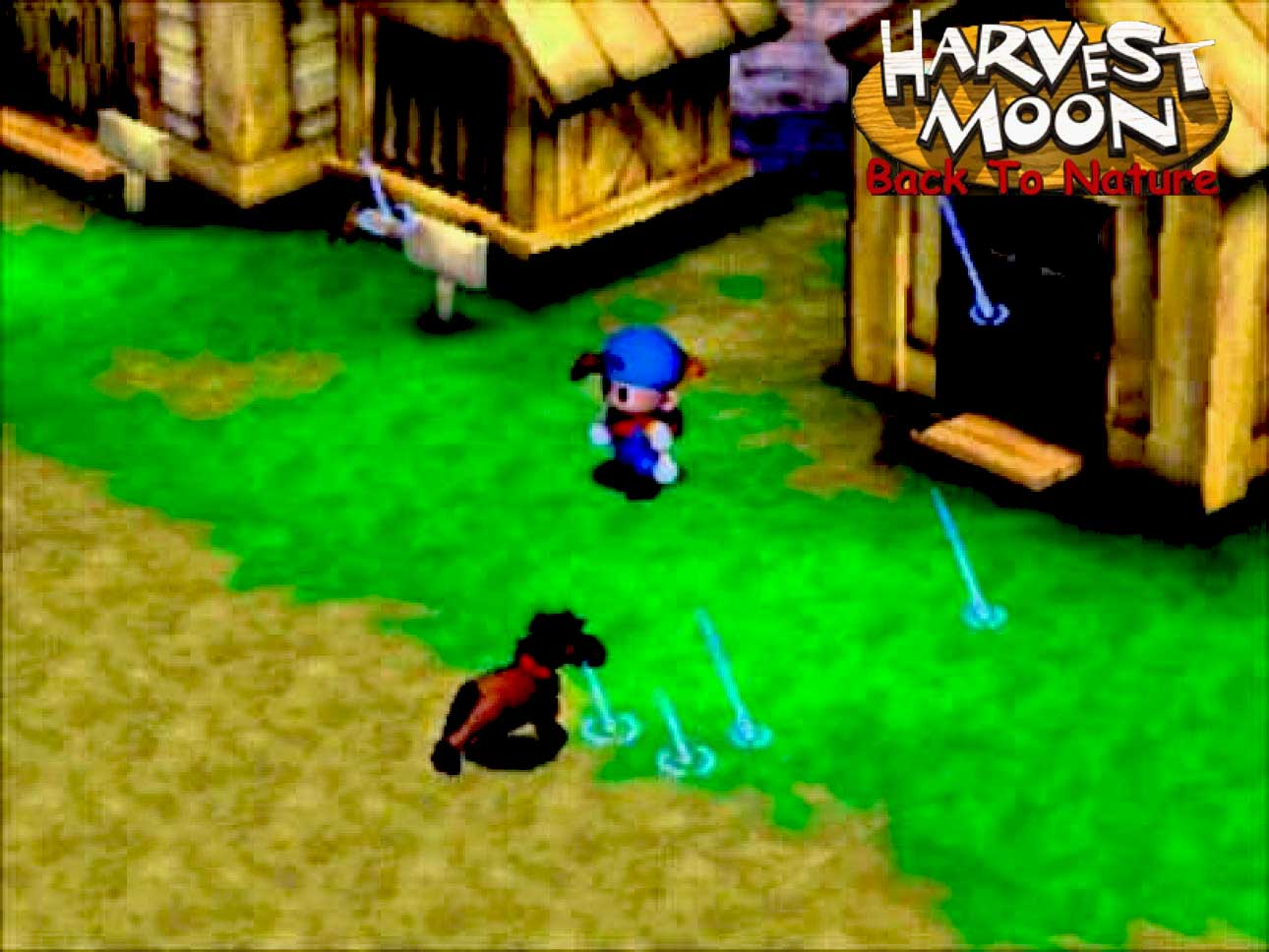 Download Rom Ps1 Harvest Moon Btn Bahasa Indonesia High