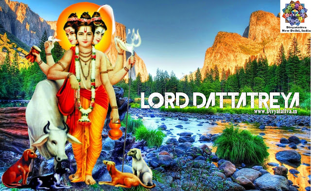 Hindu god Guru Dattatreya ,Wallpaper, images, photos for your deskop computer in HD Full size