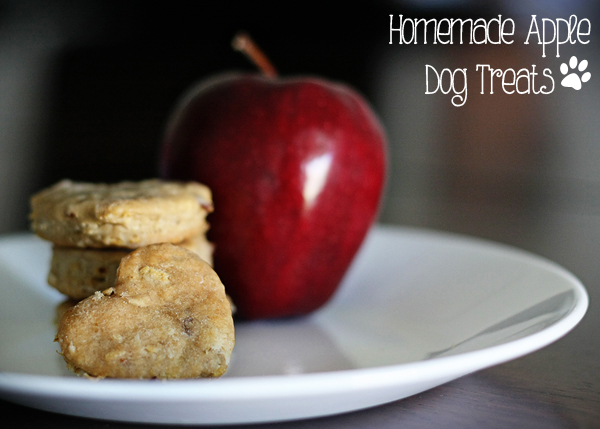 Apple Dog Treats