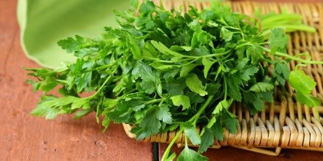 Manfaat dari parsley yang perlu Anda ketahui