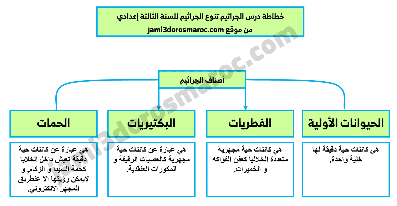 خطاطة درس الجراثيم - تنوع الجراثيم للسنة الثالثة اعدادي