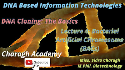 DNA Cloning: The Basics    Bacterial Artificial Chromosomes (BACs) Lecture 4