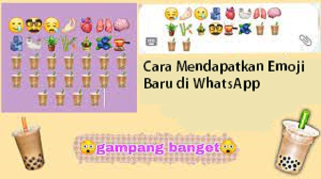 Cara Mendapatkan Emoji Baru di WhatsApp