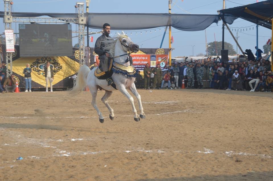 بالصور ننشر فعاليات مسك ختام  مهرجان البحيرة الثالث عشر للخيول العربية الاصيلة على أرض كوم حماده