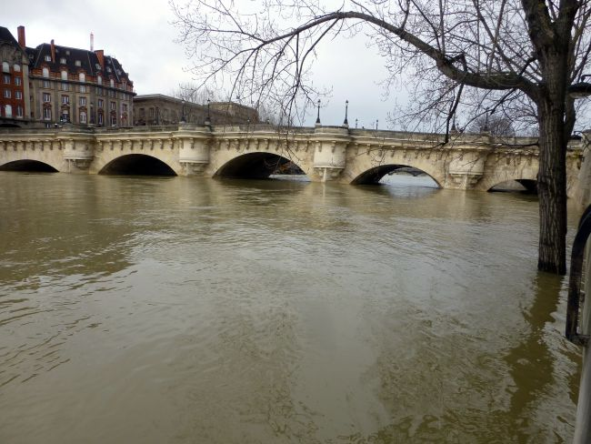 The water level of the Seine (Pont Neuf)