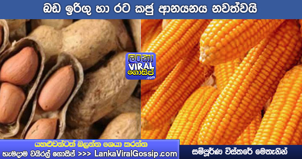 stop import corn