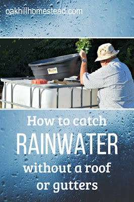 How to catch rainwater even if you don't have a roof and gutters nearby.