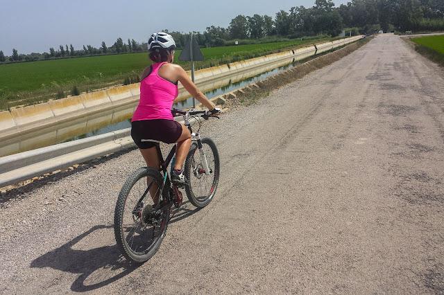 Recorrer el Delta en bici
