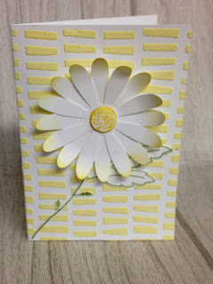 daisy punch zena kennedy independent stampin up demonstrator