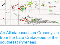 http://sciencythoughts.blogspot.co.uk/2015/01/an-allodaposuchian-crocodylian-from.html