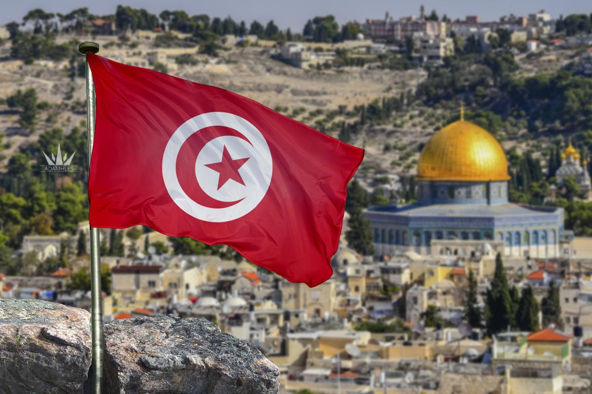 علم تونس في القدس اجمل خلفيات تونس Flag of Tunisia in Jerusalem