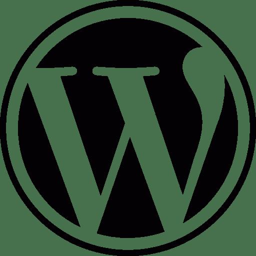 Wordpress İle Web Sitesi Yapımı