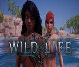 wild-life-build-20200731