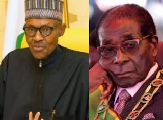 Oldest African leaders Nigeria's President Buhari and Mugabe