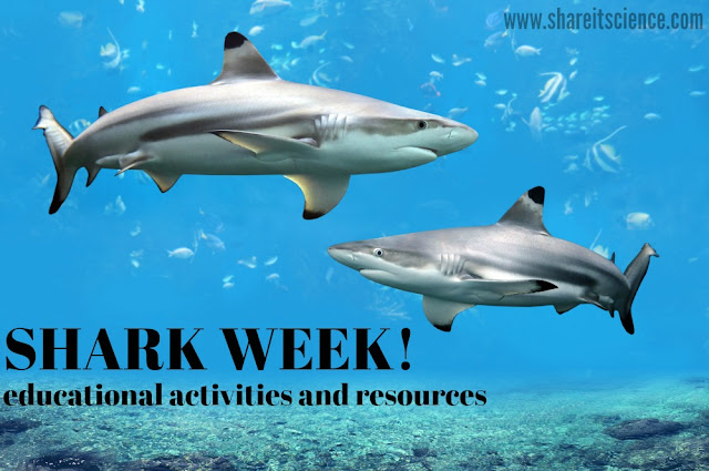 Shark Week Science and STEM activities