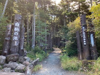 白駒の池と苔の森の遊歩道