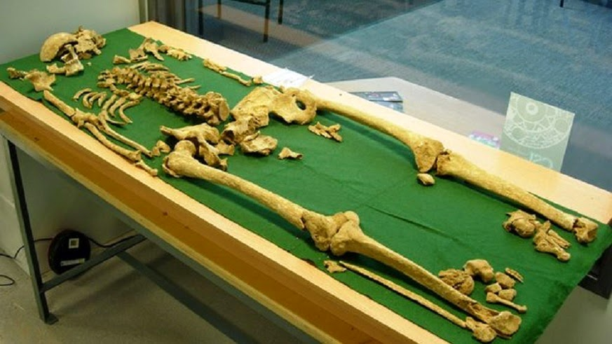 Tests to be carried out on 4,000-year-old Racton Man