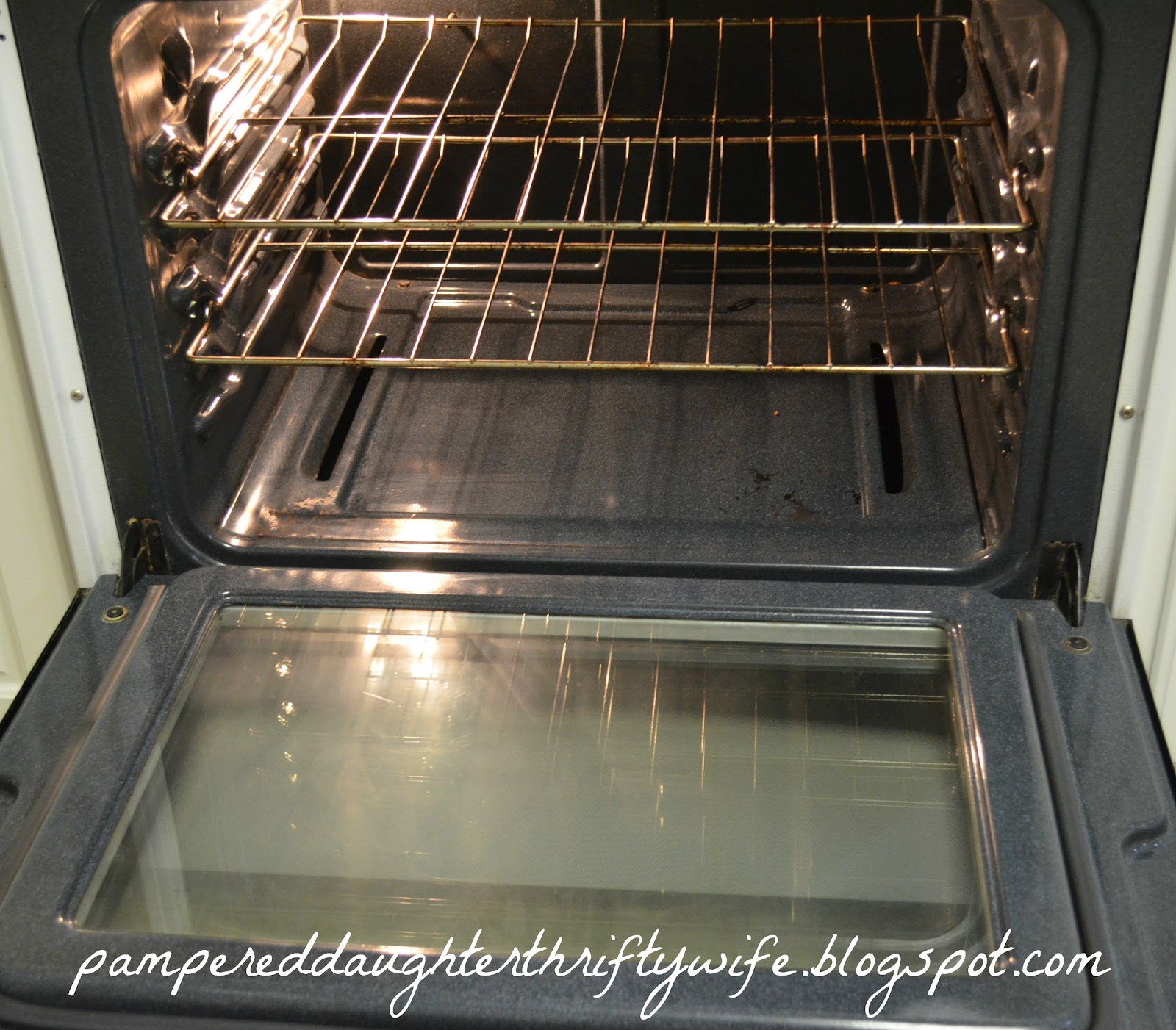 What Can I Use To Clean My Oven Naturally