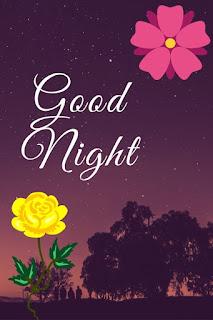 yellow rose good night image