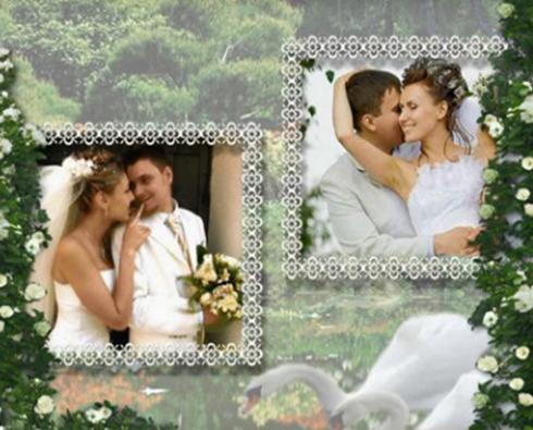 Свадьба Лебеди