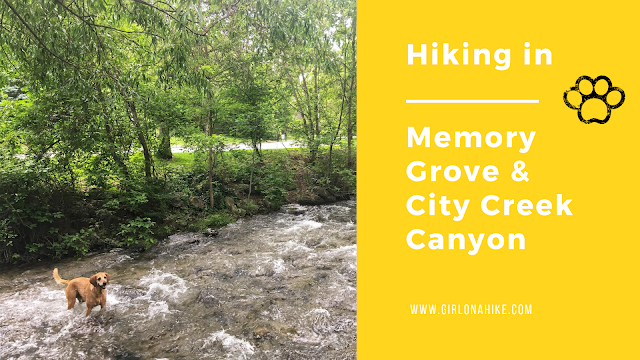 Hiking in Memory Grove Park & City Creek Canyon