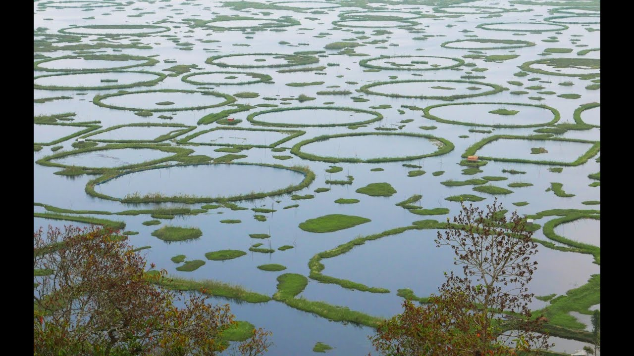 Loktak Lake, Indiathinkers
