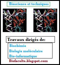 Exercices de biologie moléculaire, biochimie et bioinformatique
