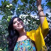kusuma agrowisata petik apel - Tempat Wisata Study Tour Malang Batu
