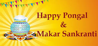 Happy Pongal and Makar sankranti 2017