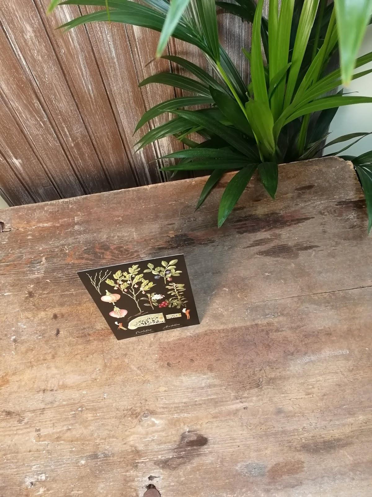 kortti kasvi