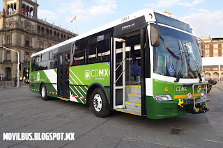 dina linner autobus urbano