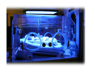 phototherapyy in an incubator.