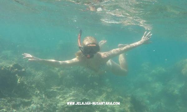 aktivitas wisata trip satu hari pulau pramuka