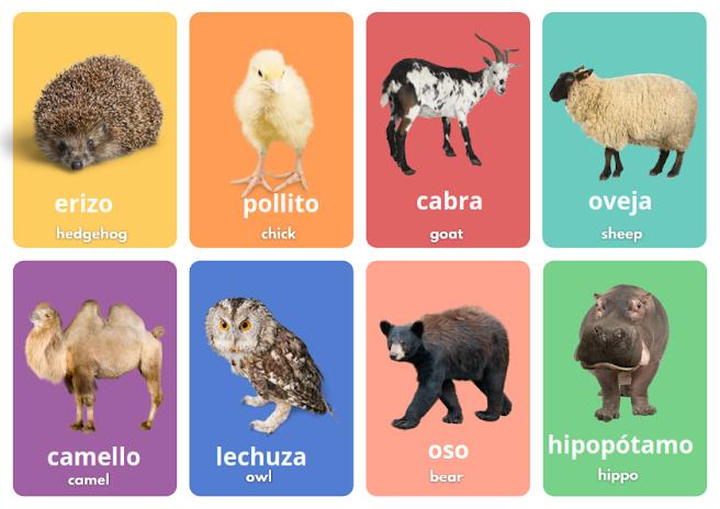 wild animals in Spanish