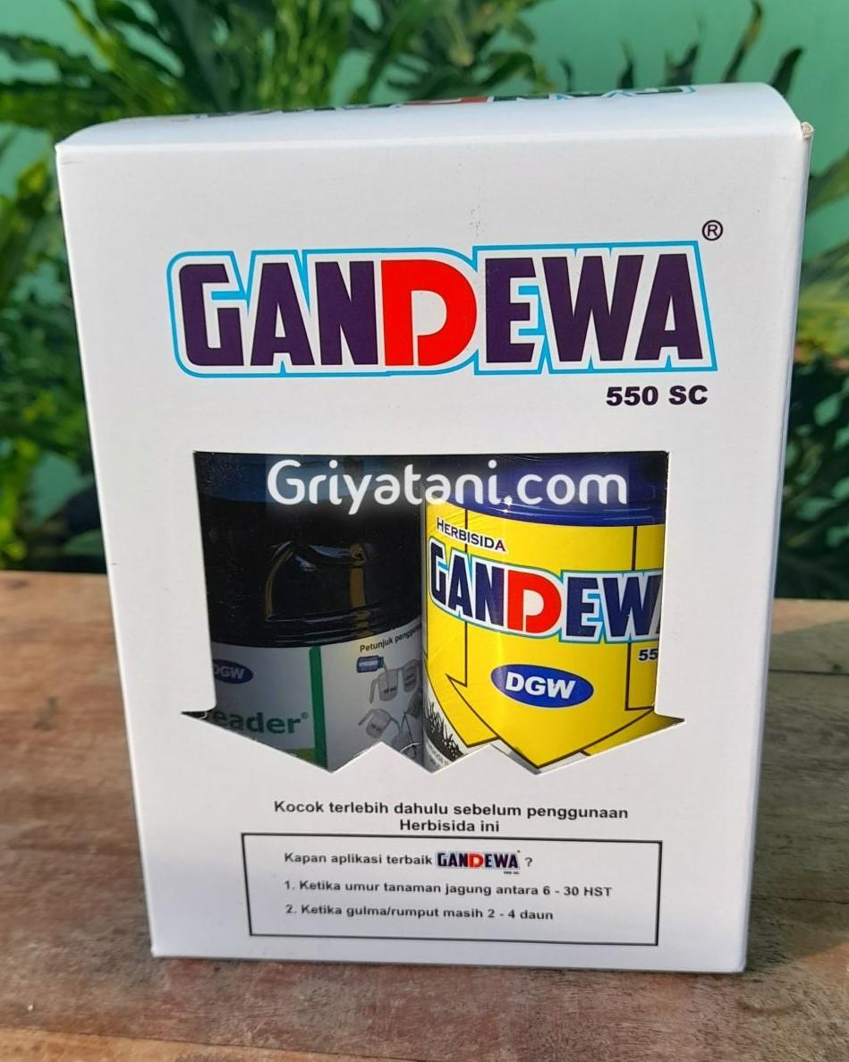Gandewa 500ml