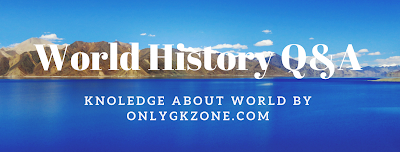 World History Q&A