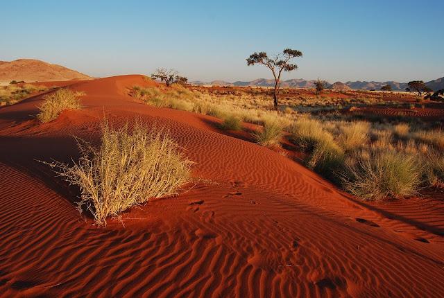 dunes Namib