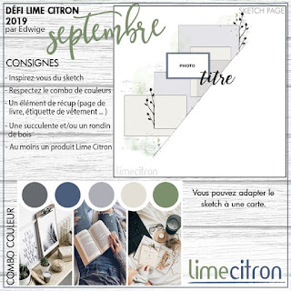 http://limecitron.blogspot.com/2019/09/defi-septembre-2019-edwige.html