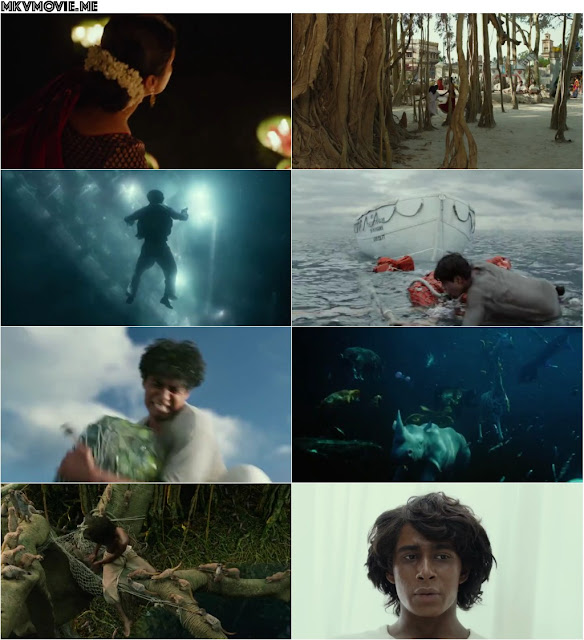 Download Movie Life Of Pi Dvdrip Torrent