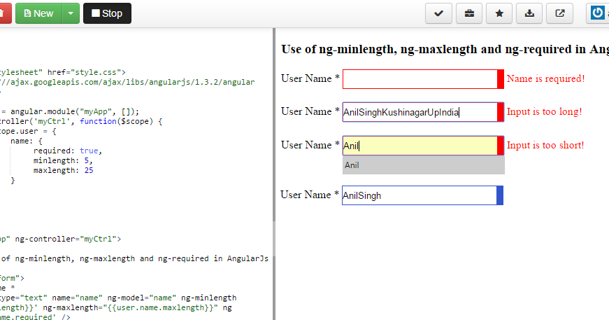 Angularjs forms & validation. Angularjs form example.