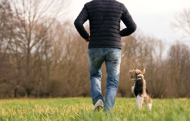 Uomo in salute che cammina