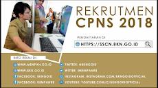 Cara Lolos Test CPNS dan Formasi CPNS serta Syarat Pendaftaran CPNS 2018!