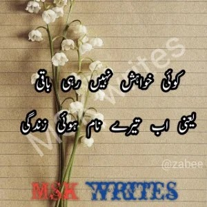 Love Urdu Poetry