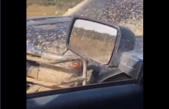 Video: Guardia Nacional asegura dos camionetas llenas de lodo y plomo bien abandonadas tras emboscada del día de ayer de Sicarios del CDN