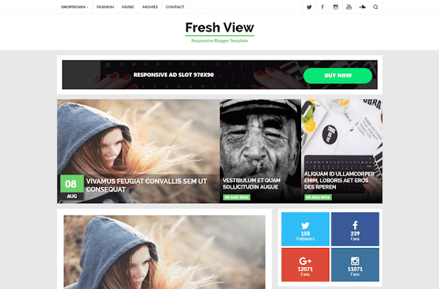 Best professional blogger template Fresh View 2017
